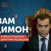 Яхты, дворцы и миллиарды Медведева